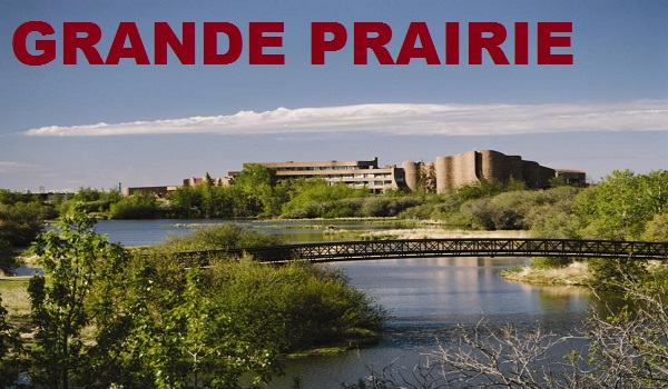 Bingo In Grande Prairie