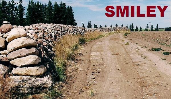 Snap Car Cash Smiley